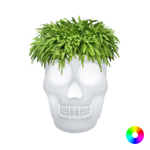 QeeBoo Mexico Planter Led